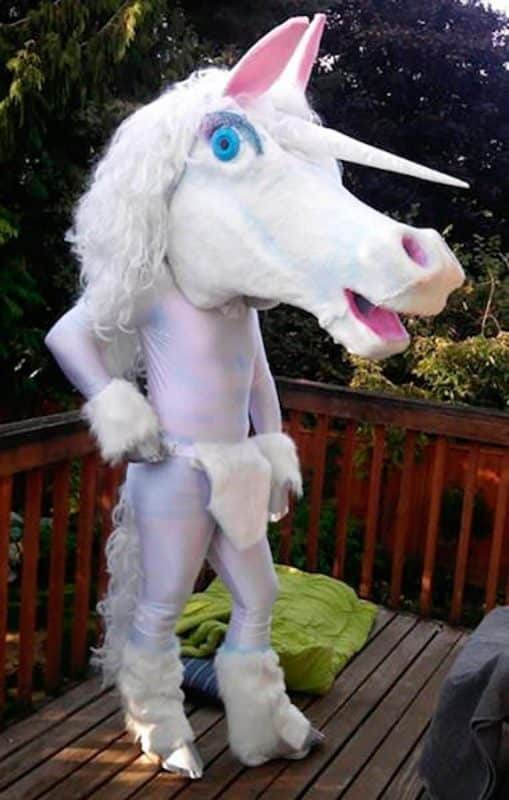 Big Unicorn Head Disguise
