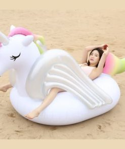 Unicorn Float A Pride Animal