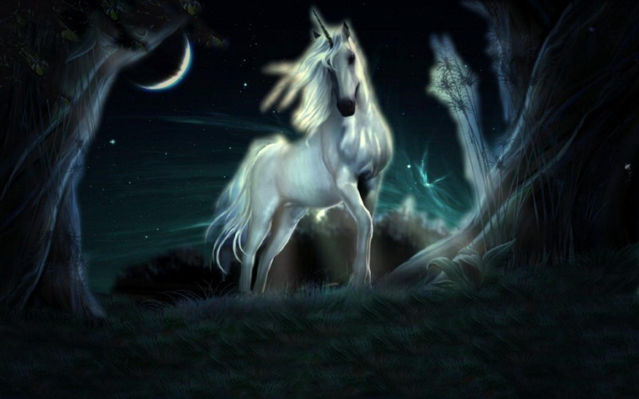 The Legend Of The Unicorn