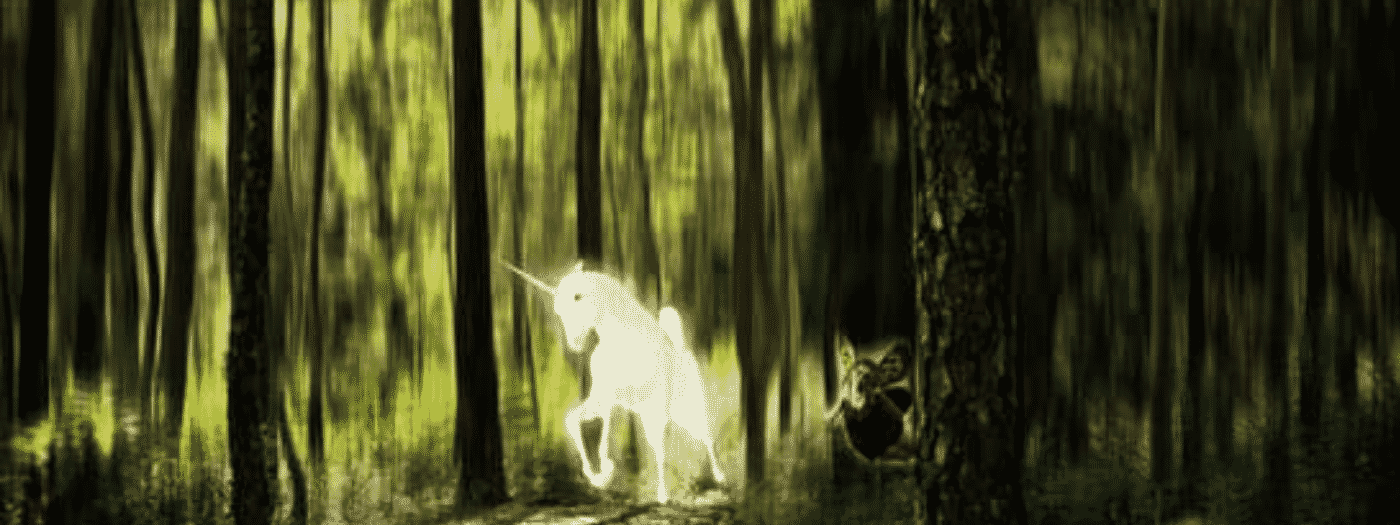 Unicorn Is Running In The Forest