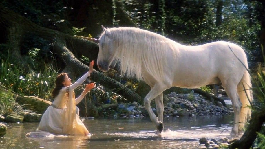Women In The Forest Meet A Unicorn
