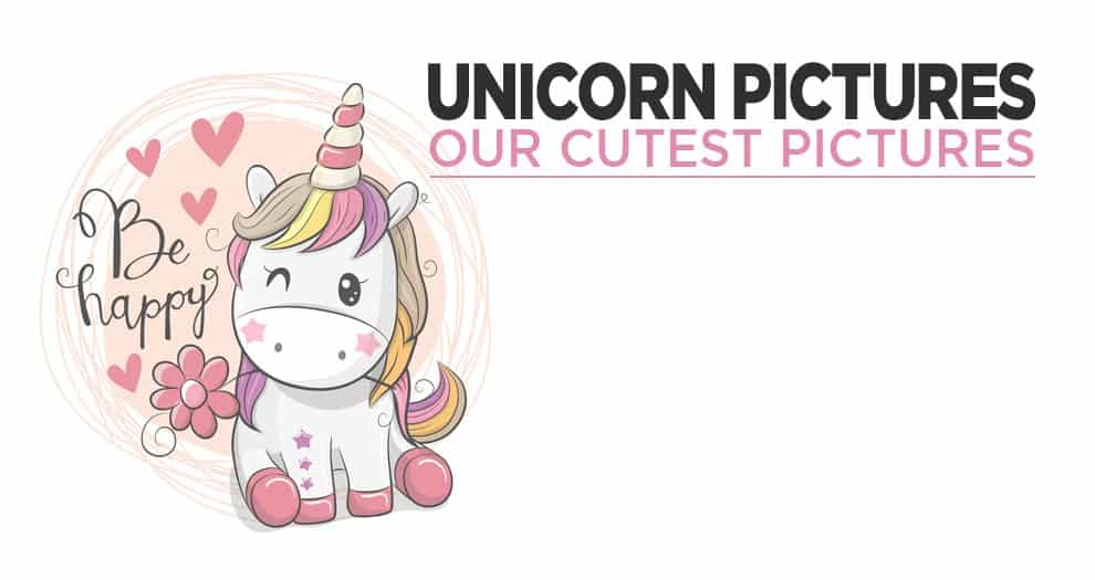 Our Most Beautiful Photos Of Unicorns