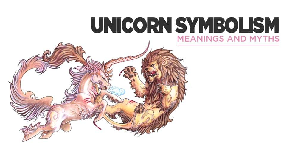 What Does The Unicorn Symbolize ? Meanings And Myths