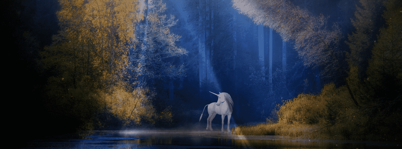 Unicorn In The Magic Forest