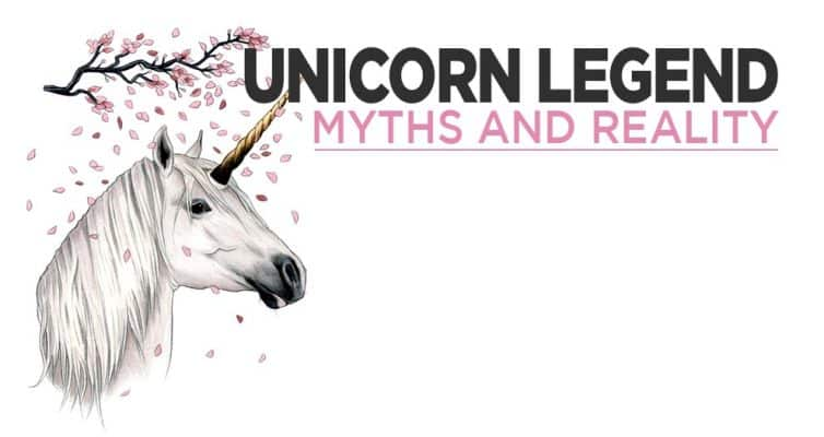 The Legend Of The Unicorn - Myths And Reality