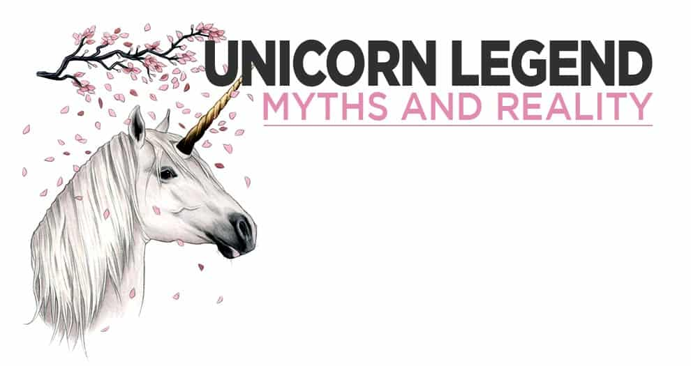 Where Did The Legend Of The Unicorn Come From ?