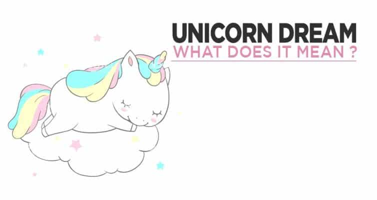 Unicorn Dream, What Does It Mean