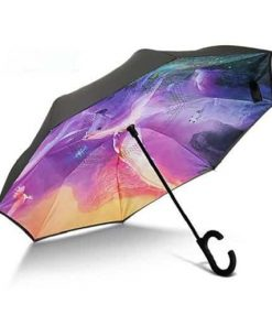 Unicorn Umbrella Game