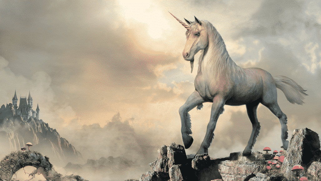 Unicorn Is Standing On A Hills