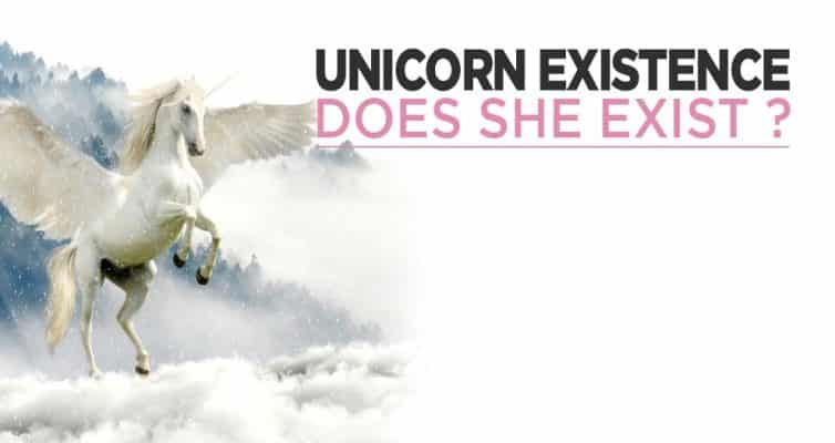 Do Unicorns Exist ?