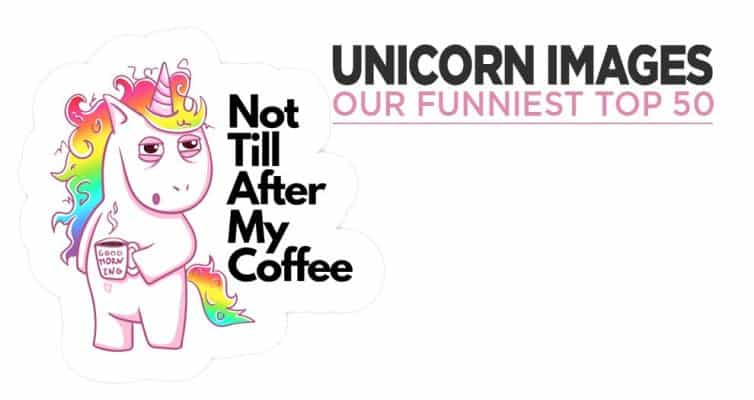 Our Funny Unicorn Picture