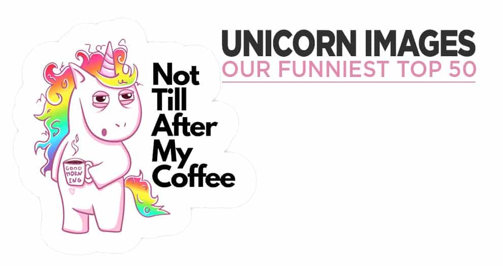 Top 50 Of The Funniest Unicorn Pictures On The Internet !