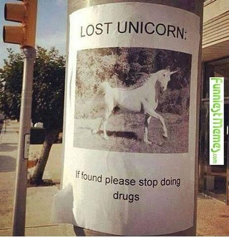 lost unicorn if found please stop doing drugs