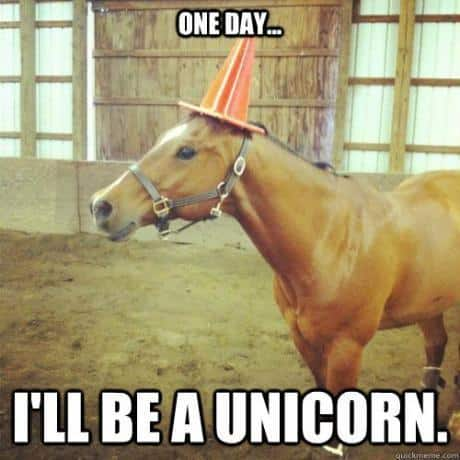 one day i'll be a unicorn