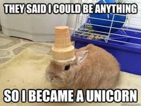 they said i could be anything so i became a unicorn