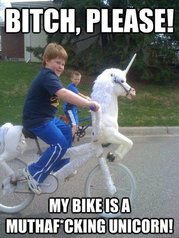 unicorn bitch please my bike is a muthafucking unicorn