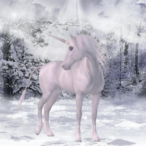 Unicorn In A Snow Forest