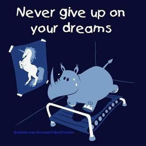 unicorn never give up on your dreams