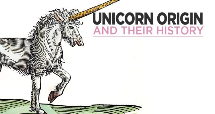 Origin Of The Unicorn And Their History
