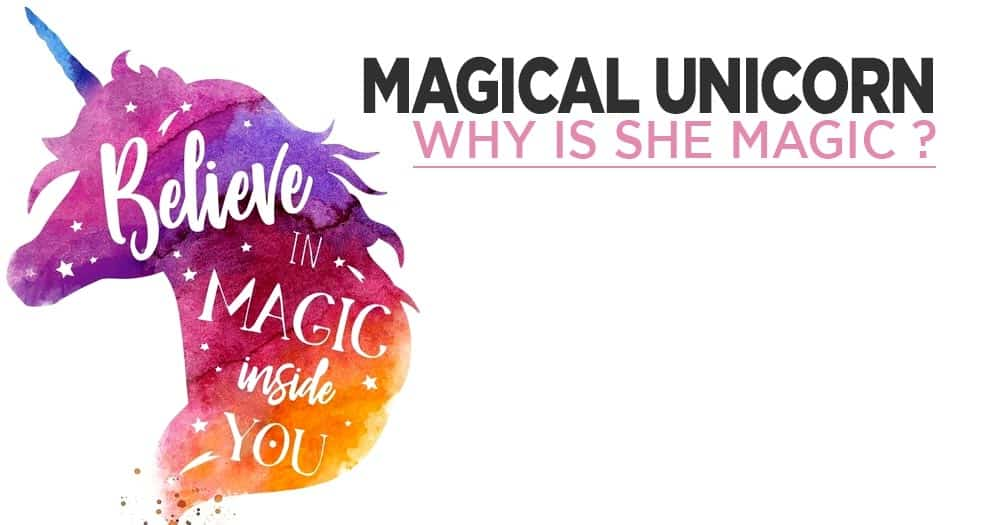 Why Are Unicorns Magical ?  All His Secrets Will Come Out