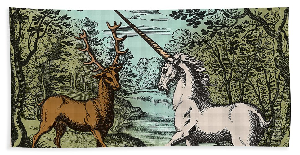 Unicorn And Stag